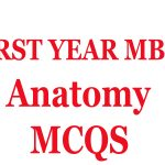 Anatomy mcqs for first year mbbs