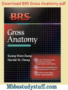 BRS Anatomy Pdf download
