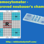 Haemocytometer – Improved neubauer's chamber