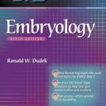 BRS Embryology pdf download and Review