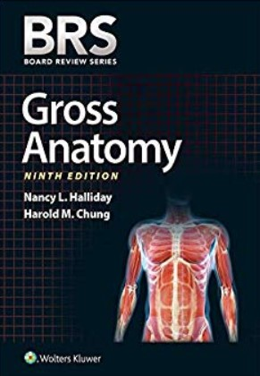 BRS Gross Anatomy 9th Edition PDF Download and Review