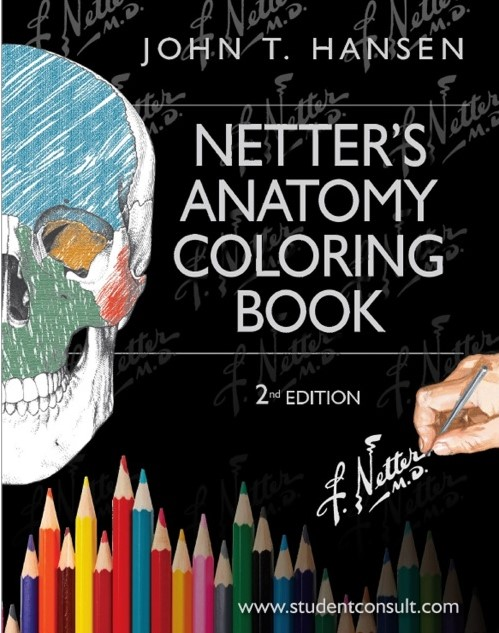 Download Netter's Anatomy Coloring Book PDF Free [Direct Link] - Medical  Study Zone