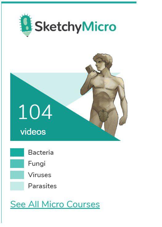 Sketchy Microbiology pdf 2018 Free Download