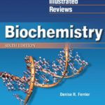 Download Lippincott Biochemistry 6th Edition PDF Free [Direct Link]