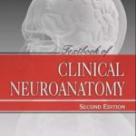 Download Textbook of Clinical Neuroanatomy Vishram Singh 2nd Edition PDF Free