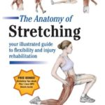 Download The Anatomy of Stretching Second Edition PDF Free