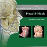 Download Lippincott Concise Illustrated Anatomy Head & Neck 3rd Edition PDF FREE