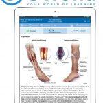 Download UWorld For USMLE Step 1 2020 PDF Free
