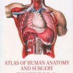 Download Atlas of Human Anatomy and Surgery 25th Edition PDF Free