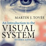 Download An Introduction to the Visual System 2nd Edition PDF Free