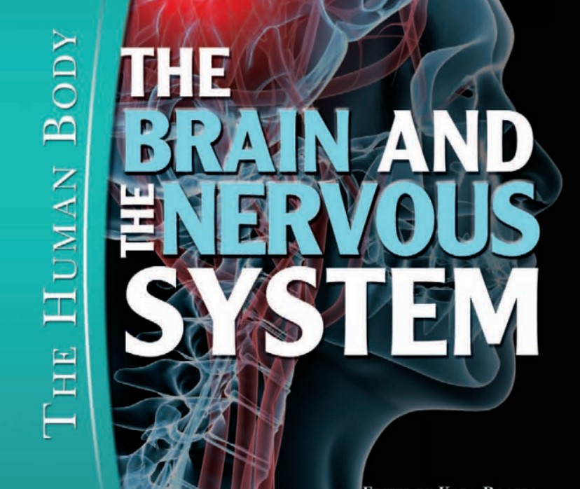 The Brain and the Nervous System (The Human Body) PDF Free Download