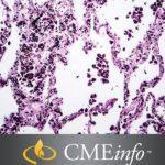 Lung Pathology 2020 Masters of Pathology Series Free Download