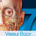 Human Anatomy Atlas 2021 Complete 3D Human Body Cracked For Android Free Download