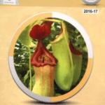 Class 11th Biology PDF Punjab Textbook Board 2021 Free Download