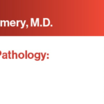 Download 2021 Expert Series with Elizabeth Montgomery, M.D. Gastrointestinal Pathology: A One-On-One Tutorial Free