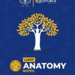 Anatomy LMRP NOTES PDF Free Download