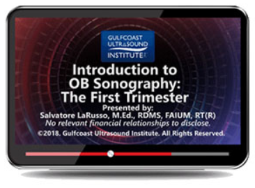 Gulfcoast: Introduction to OB Sonography – The First Trimester Videos Free Download