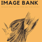 Notespaedia Anatomy Image Bank PDF Free Download