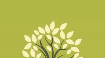 Notespaedia Image Bank Final Year PDF Free Download