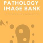 Notespaedia Pathology Image Bank PDF Free Download