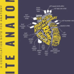 Notespaedia Elite Anatomy – Edition 2 PDF Free Download